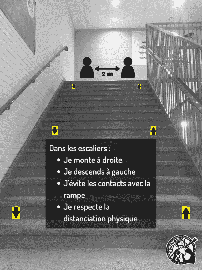 escaliers2-1-768x1024.png